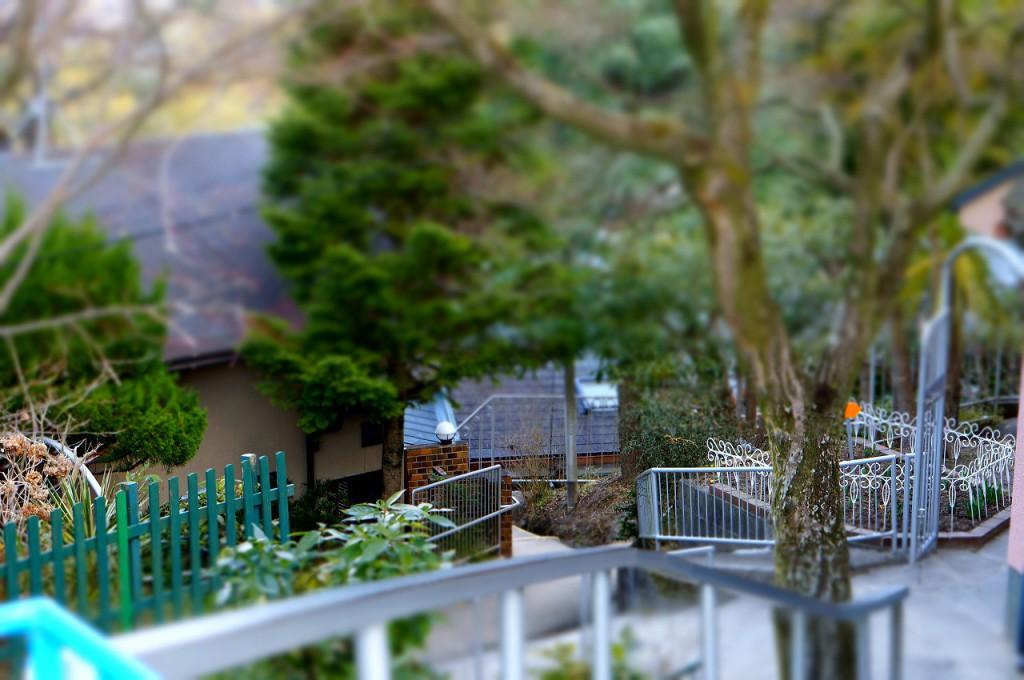園庭から第3園舎に向かう道