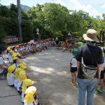 2018-07-09 運動遊び(年少)