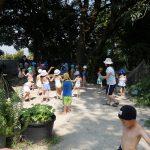 2018-07-18 水遊び(年長)