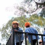 2019-04-12 年少の外遊び