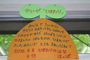 dsc_0615-20160924